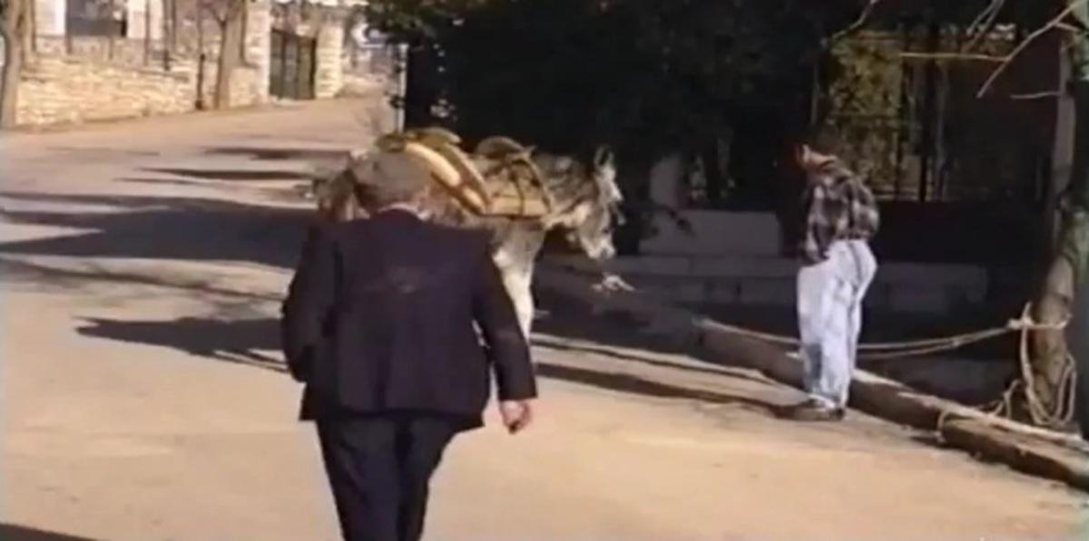 Αχαϊα: Η φάρσα με τον γάιδαρο που μιλάει -Δείτε το βίντεο!   Newsit.gr