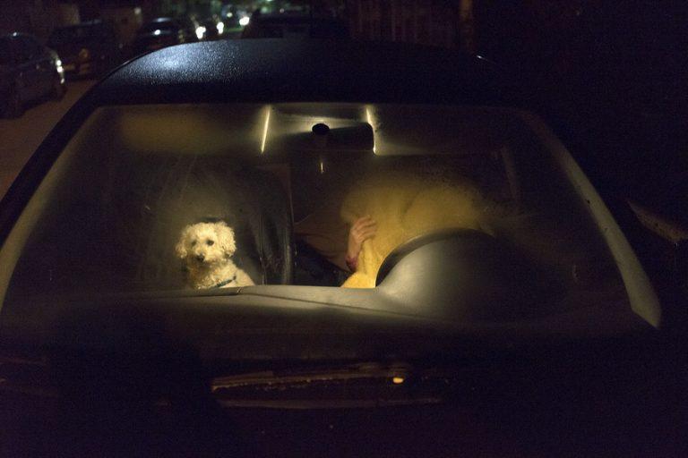 Σεισμός στα Γιάννενα: Την… έβγαλε στο αμάξι με το σκύλο! [pics]