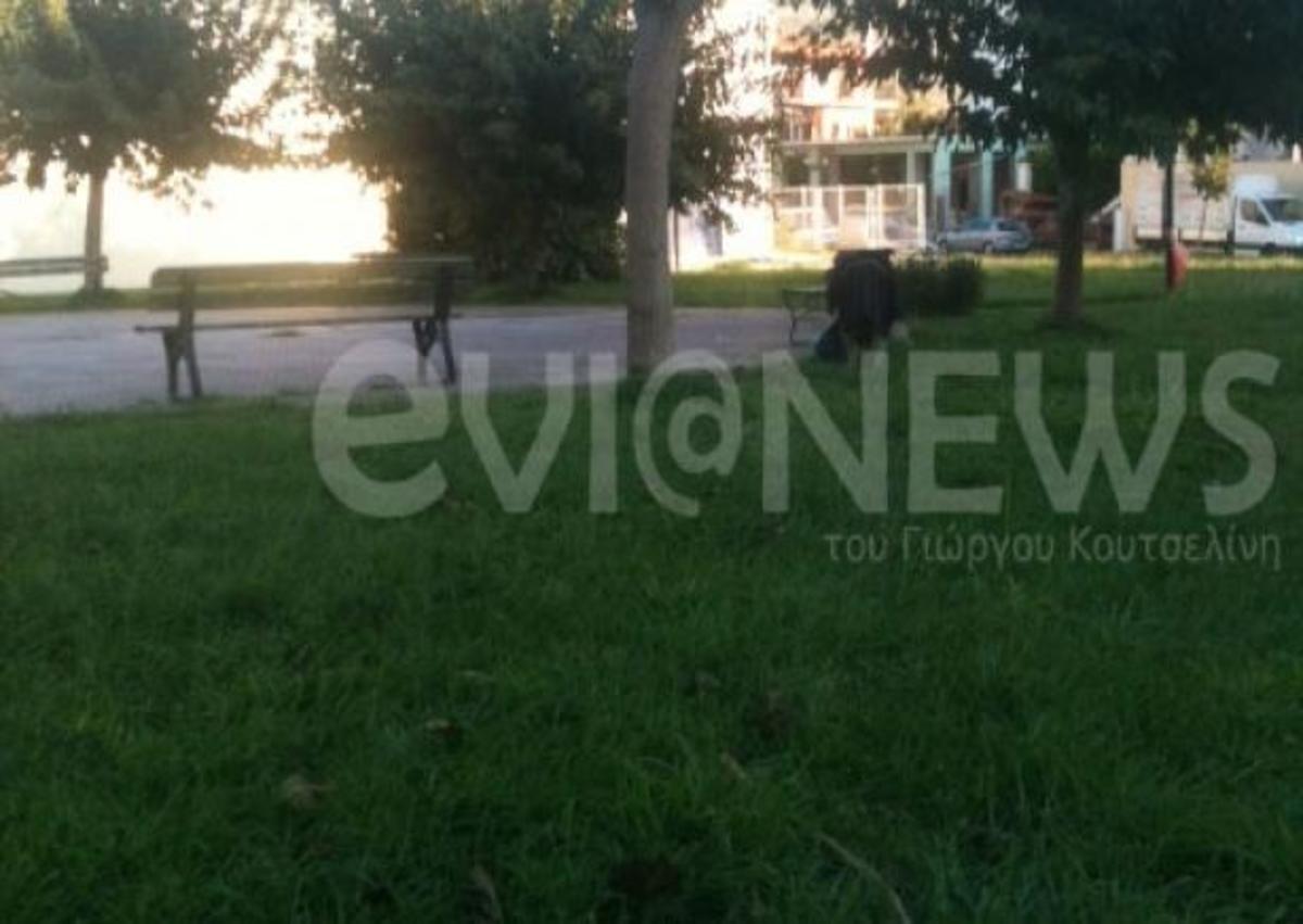 Χαλκίδα: Ψάχνει για φαγητό μέσα στο… γκαζόν   Newsit.gr