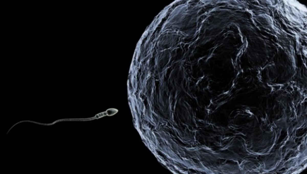 Οι πρώτες γεννήσεις υγιών μωρών από γυναίκες με Σύνδρομο Υπερδιέγερσης Ωοθηκών | Newsit.gr