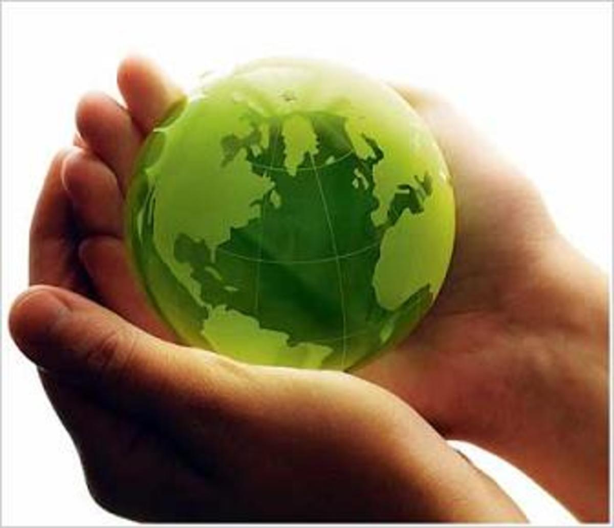 Θα εξαφανιστεί,  το ένα τρίτο της πανίδας, από τη Γη… | Newsit.gr