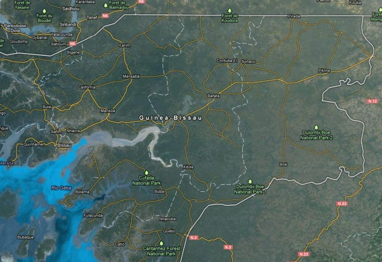 Πραξικόπημα στη Γουινέα Μπισάου   Newsit.gr