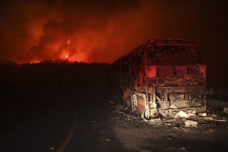 Πύρινη κόλαση στο Ισραήλ – Τουλάχιστον 40 οι νεκροί από ανεξέλεγκτη πυρκαγιά κοντά στη Χάιφα | Newsit.gr
