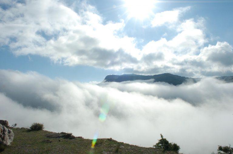 Βροχή με… 31 βαθμούς! | Newsit.gr