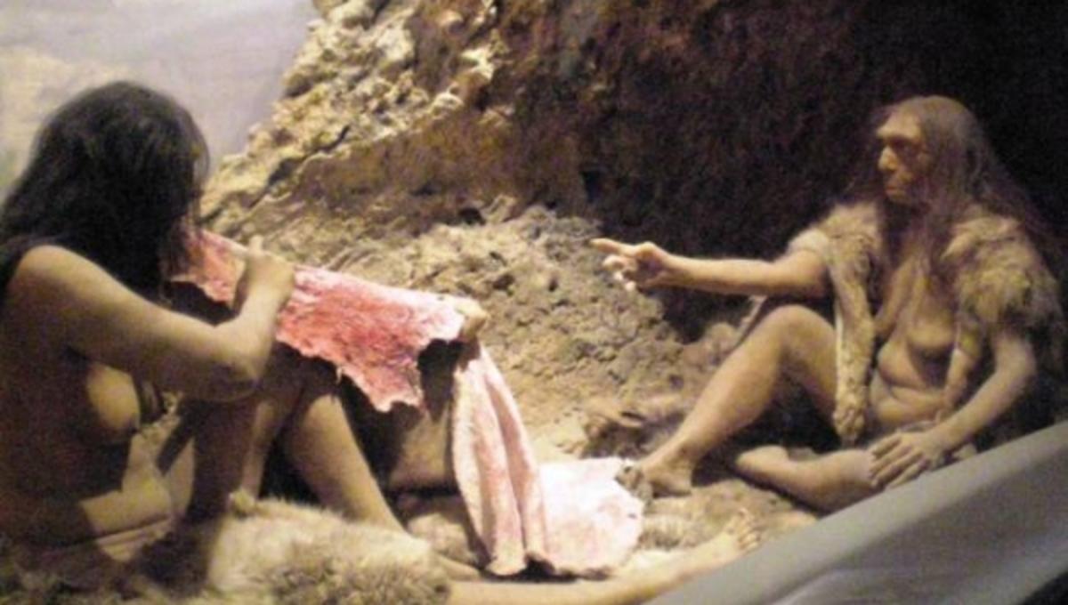 Είχαν ερωτικές επαφές οι Homo Sapiens με τους Νεάντερταλ;   Newsit.gr