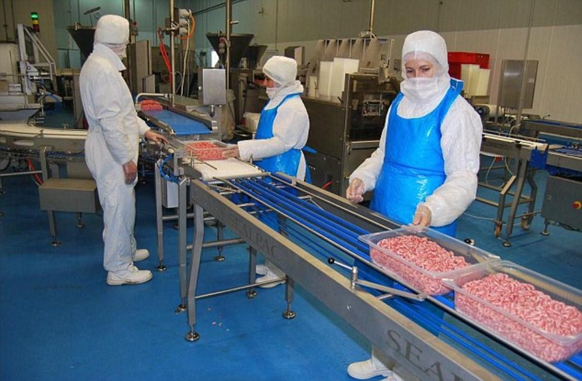 Αυτό είναι το σφαγείο στην Ρουμανία που έδινε κρέας αλόγου σε όλη την Ευρώπη! | Newsit.gr
