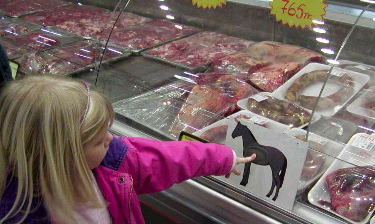 Ρουμανία: 100 κιλά κρέας αλόγου είχε δηλωθεί ως βοδινό | Newsit.gr