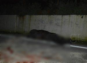 Χανιά: Αυτοκίνητο συγκρούστηκε με άλογο – «Σκληρές» εικόνες