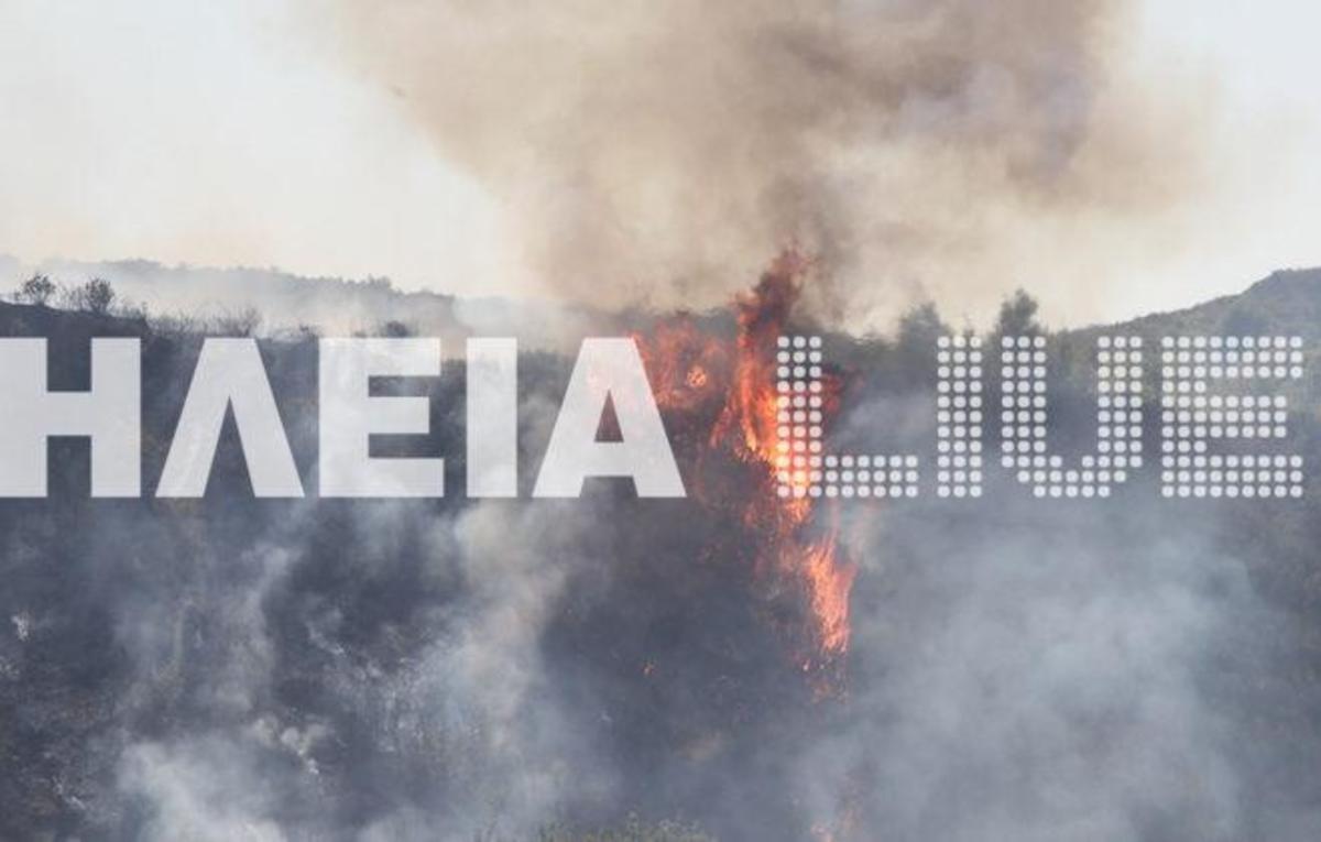 Στις φλόγες ο νομός Ηλείας – Επιχειρούν πάνω από 100 πυροσβέστες! | Newsit.gr