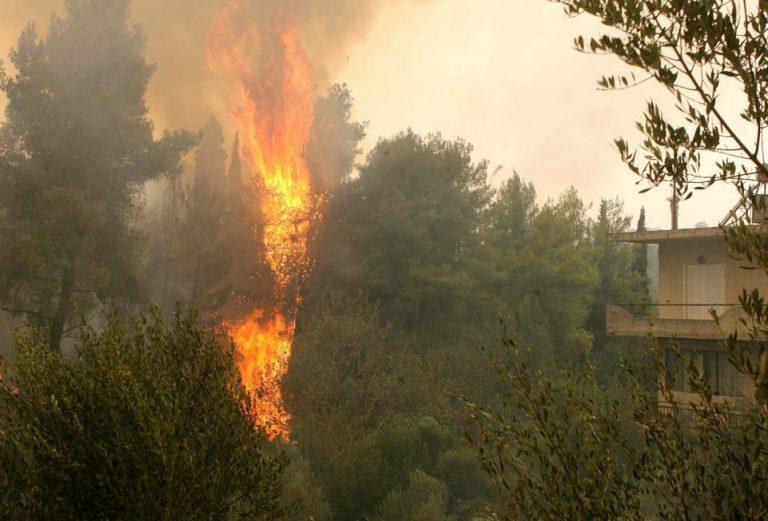 Ηλεία: 10 χρόνια με αναστολή στον πρώην νομάρχη για τις φονικές πυρκαγιές του 2007 – Δείτε τις ποινές του δικαστηρίου   Newsit.gr