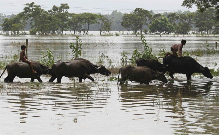 Ινδία: Δεκάδες νεκροί και 1 εκατ. εκτοπισμένοι απο τους μουσώνες | Newsit.gr