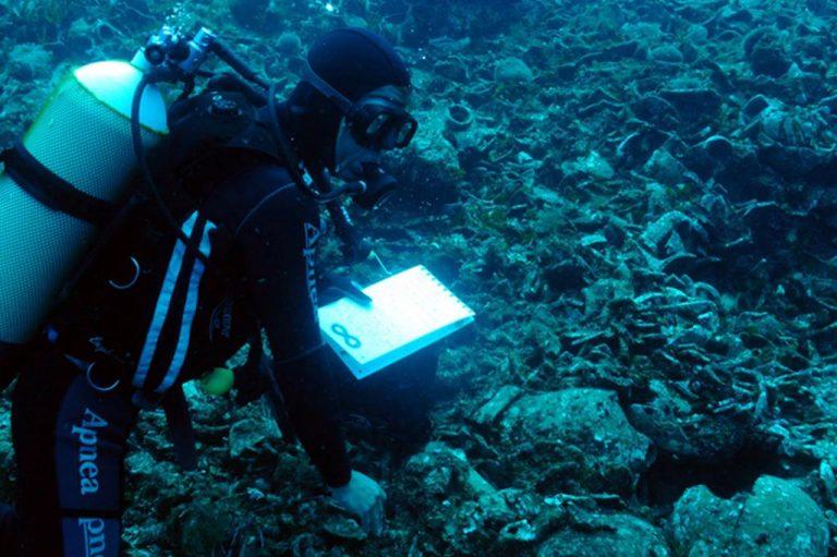 Χαλκιδική: Έκλεψαν έργα από την πρώτη υποβρύχια έκθεση φωτογραφίας | Newsit.gr