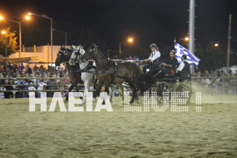 Ηλεία: H λάμψη των περήφανων αλόγων – Δείτε φωτογραφίες! | Newsit.gr