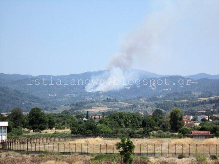 Εύβοια: Φωτιά σε δασική έκταση – ΦΩΤΟ | Newsit.gr