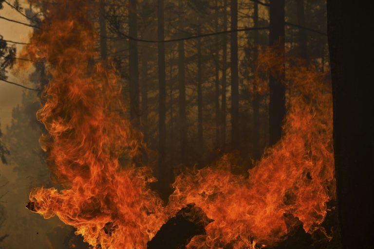 Στις φλόγες και η Ιταλία – Ένας νεκρός και τεράστιες καταστροφές | Newsit.gr