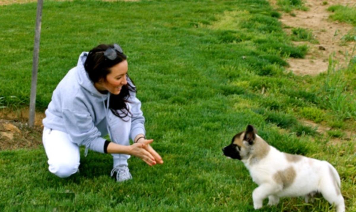 Καλομοίρα: Το σκυλάκι που της έκλεψε την καρδιά! | Newsit.gr