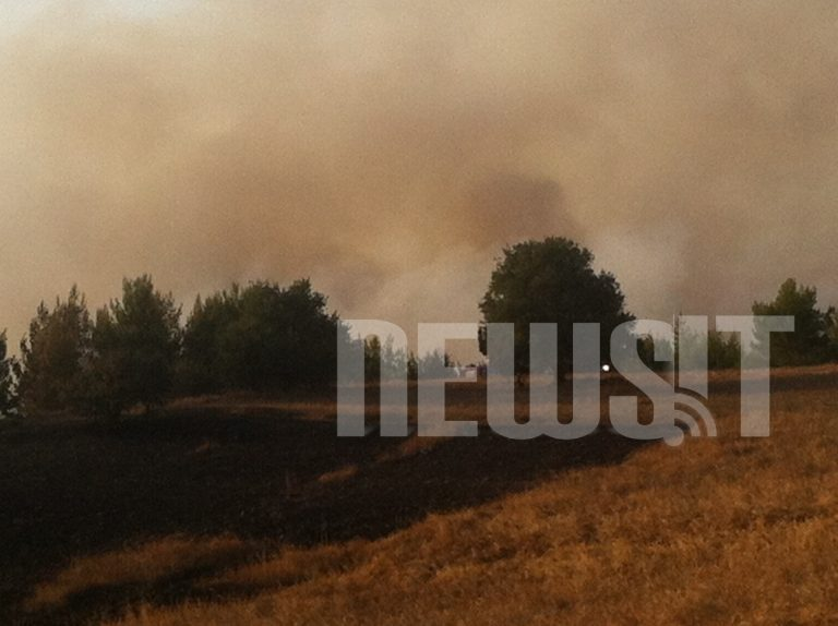 Σε ύφεση η φωτιά στο Καπανδρίτι | Newsit.gr