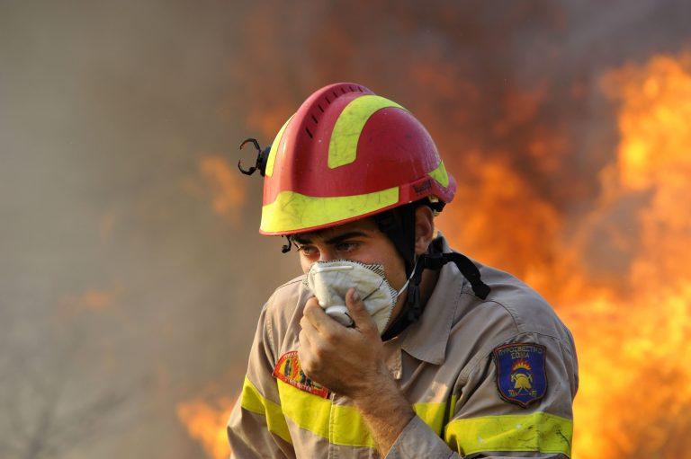 Στις φλόγες η Κάρυστος   Newsit.gr