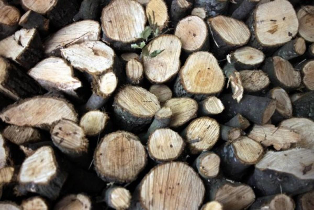 Χανιά: Δωρεάν καυσόξυλα σε κατοίκους ορεινών χωριών | Newsit.gr