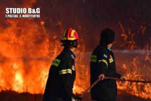 Αργολίδα: Κινδύνευσαν σπίτια από φωτιά στη Νέα Κίο [vid]