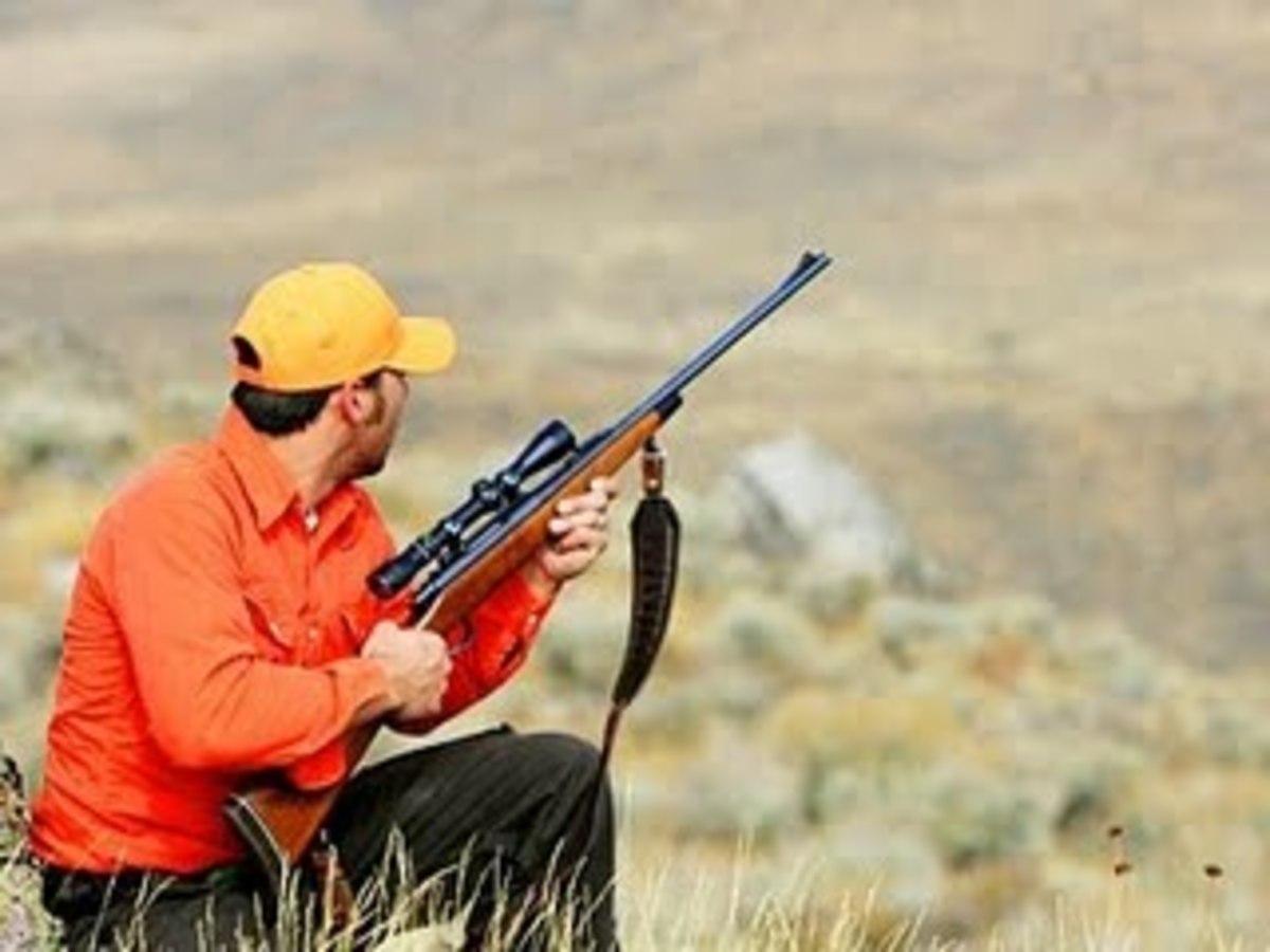 Ηράκλειο: Σκότωσε 6 λαγούς σε παράνομο κυνήγι! | Newsit.gr