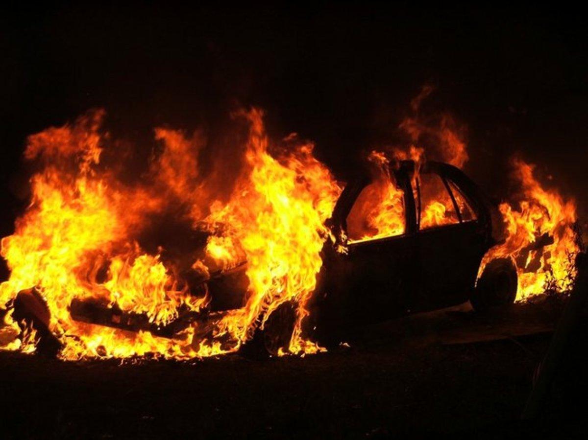 Βοιωτία: »Καρφώθηκε» σε δέντρο και κάηκε ζωντανός! | Newsit.gr
