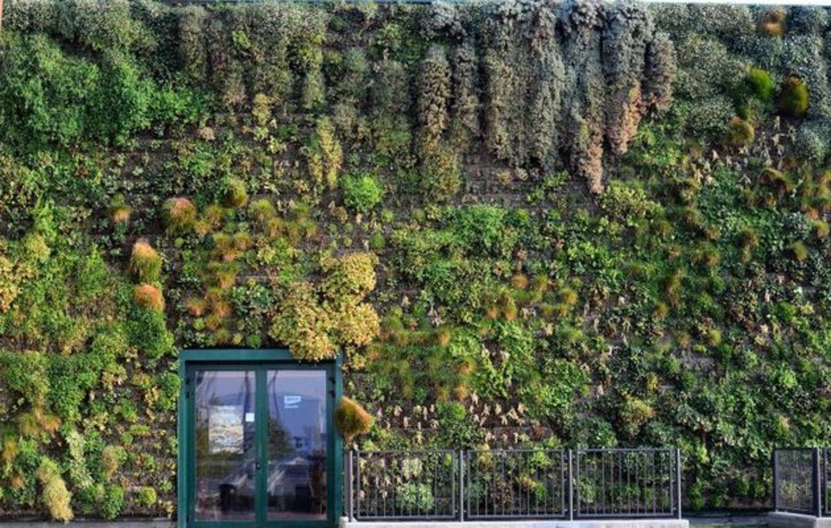 Ο μεγαλύτερος κάθετος κήπος του κόσμου | Newsit.gr
