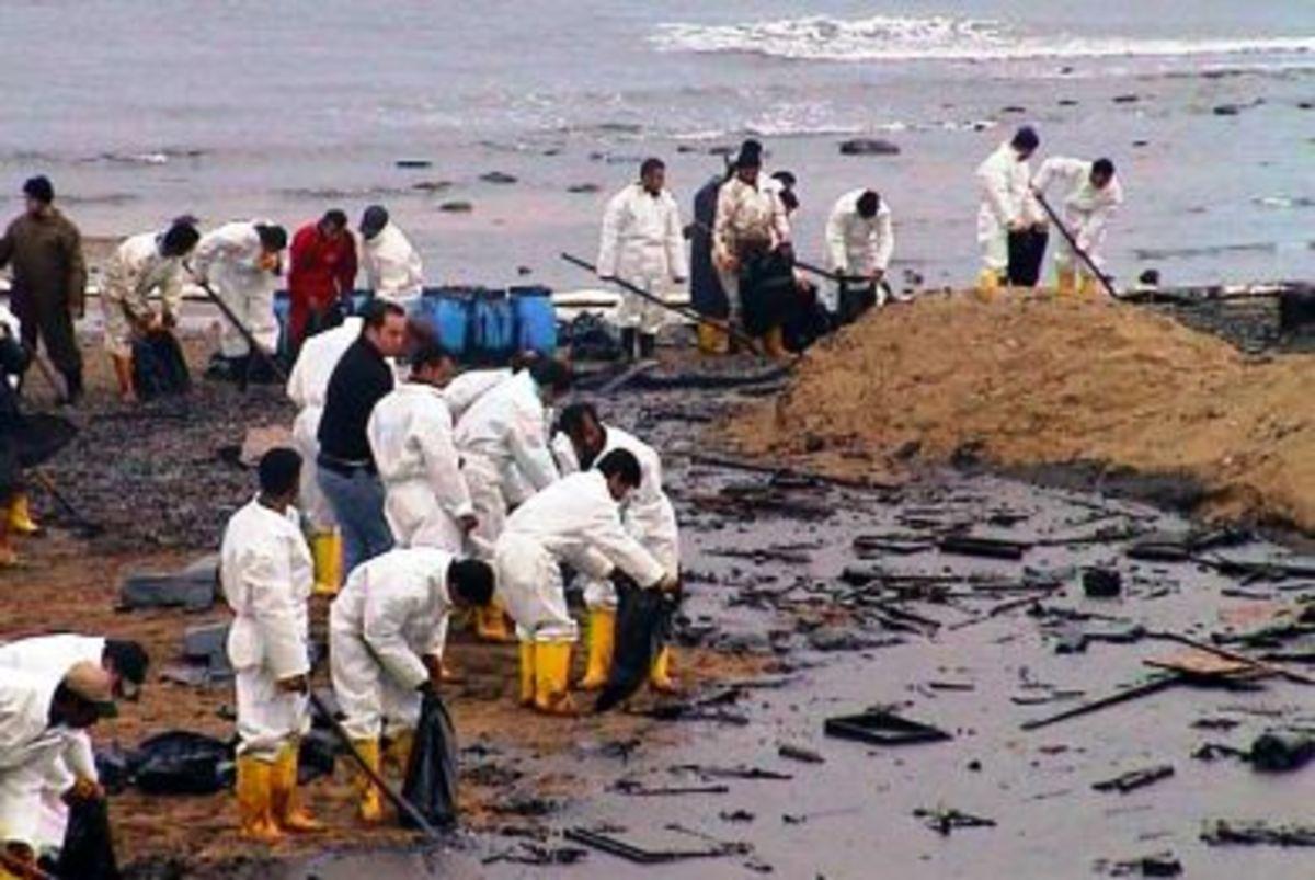 HΠA: «νεκρώνει» το θαλάσσιο οικοσύστημα…   Newsit.gr