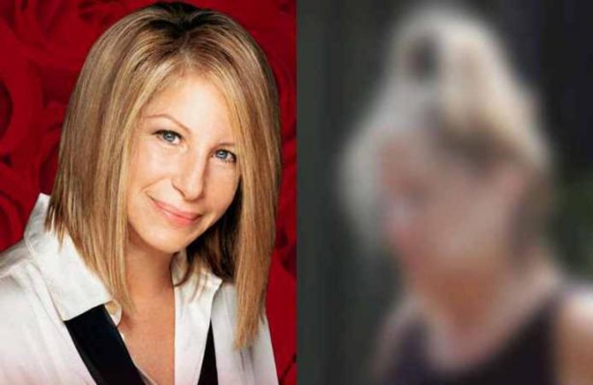 Αγνώριστη είναι σήμερα η Barbra Streisand | Newsit.gr
