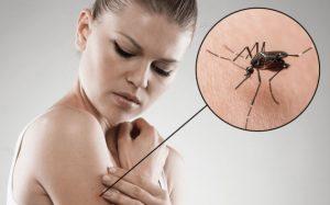 Ξεκίνησαν οι ψεκασμοί για τα κουνούπια