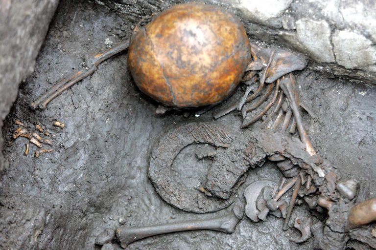 Εύβοια: Βρήκε ανθρώπινο κρανίο | Newsit.gr
