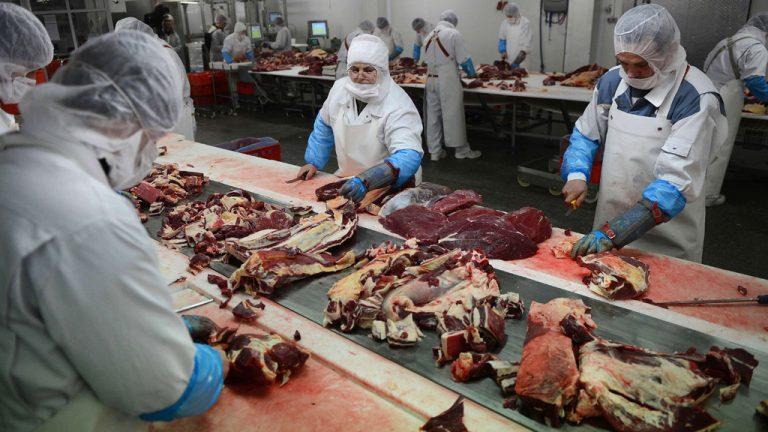 Βρετανία: Βρέθηκαν 35 θετικά δείγματα στους ελέγχους για κρέας αλόγου σε προϊόντα με βόειο κρέας | Newsit.gr