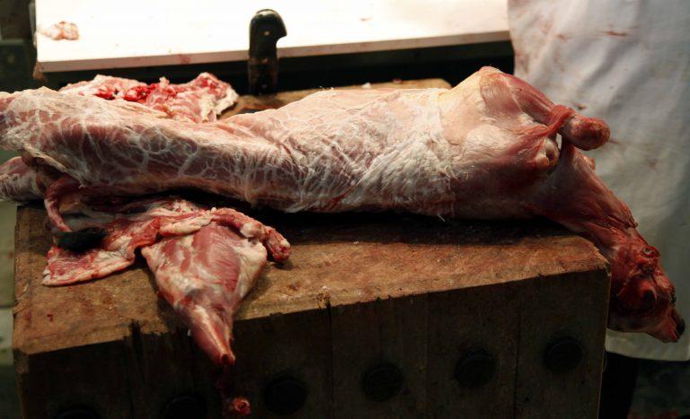 Συναγερμός στις υγειονομικές αρχές – Εντοπίστηκε DNA αλόγου σε κατεψυγμένα κρέατα στην Ελλάδα | Newsit.gr