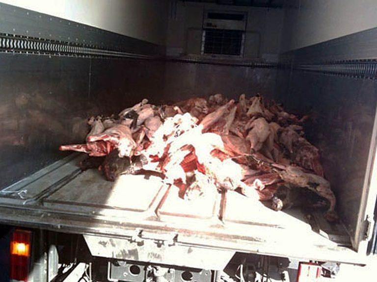 252 κιλά ακατάλληλου κρέατος κατασχέθηκαν στον Πειραιά | Newsit.gr