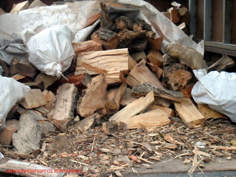 Πού θα δοθούν τα λαθραία ξύλα που κατασχέθηκαν | Newsit.gr