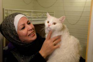 Ο πρόσφυγας γάτος που έγινε βιβλίο [pics]