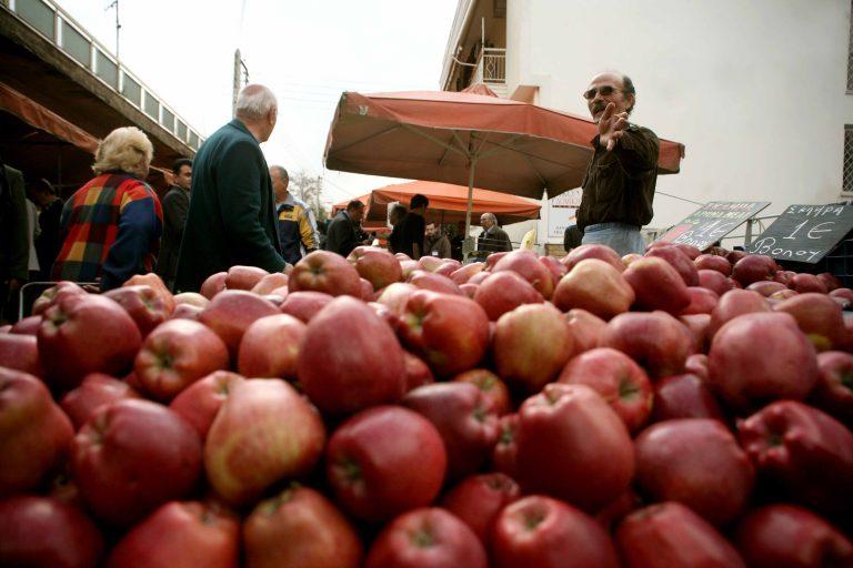 Καστοριά: Οικονομική ανάκαμψη μέσω Ιράκ; | Newsit.gr