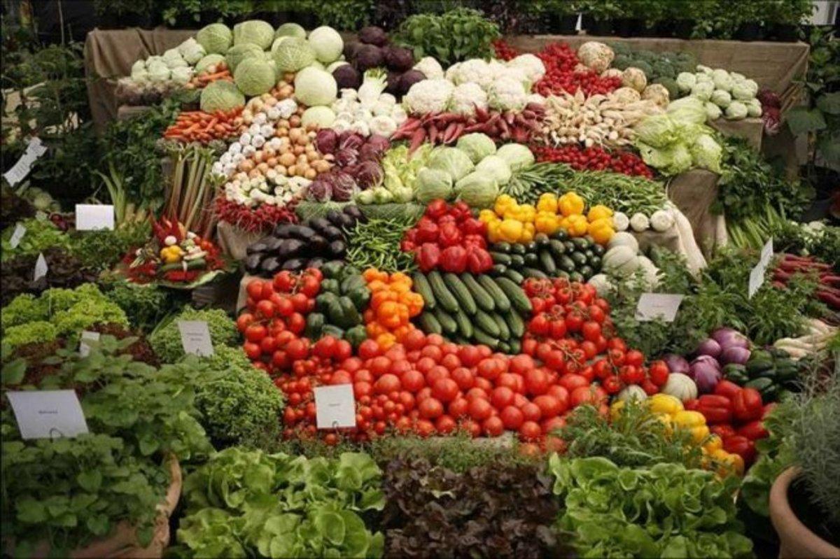 Έξι τόνοι δωρεάν λαχανικών για όσους έχουν ανάγκη   Newsit.gr