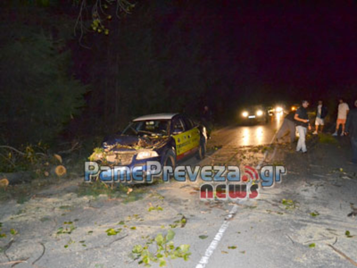Πρέβεζα: Πτώση δέντρου στην εθνική οδό – Οδηγός γλίτωσε από θαύμα! | Newsit.gr