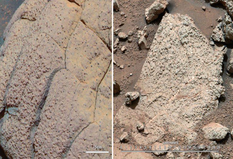Βρήκαν… ζωή στον Άρη!   Newsit.gr