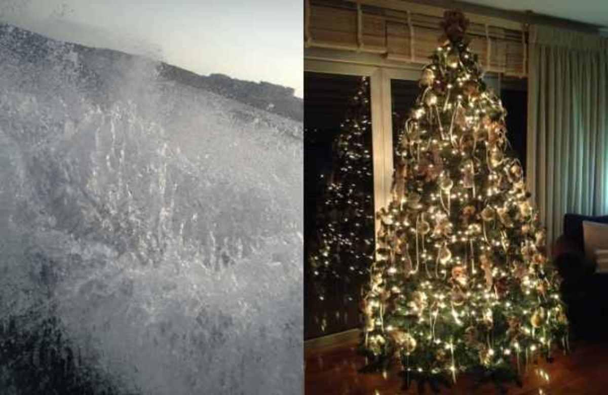 Ποιά παρουσιάστρια κολύμπησε χθές στη θάλασσα και μετά στολισε το χριστουγεννιάτικο δέντρο; | Newsit.gr