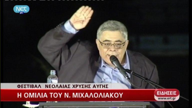 """""""Χαιρετάμε ναζιστικά"""" παραδέχεται ο Μιχαλολιάκος – ΒΙΝΤΕΟ   Newsit.gr"""
