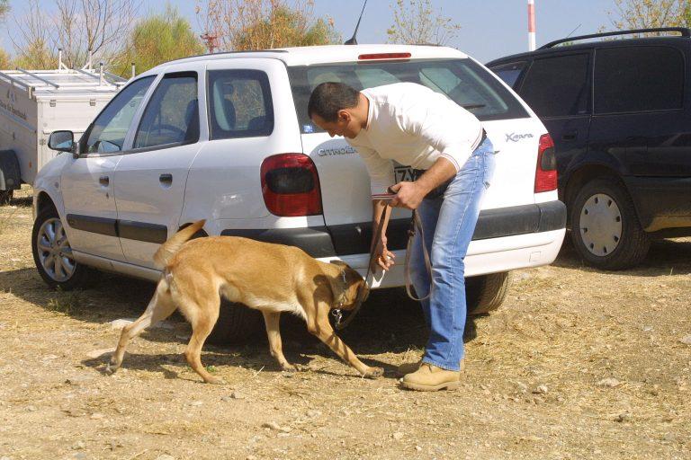 Ηλεία: Ηρωίνη, κινητά και μετρητά! | Newsit.gr