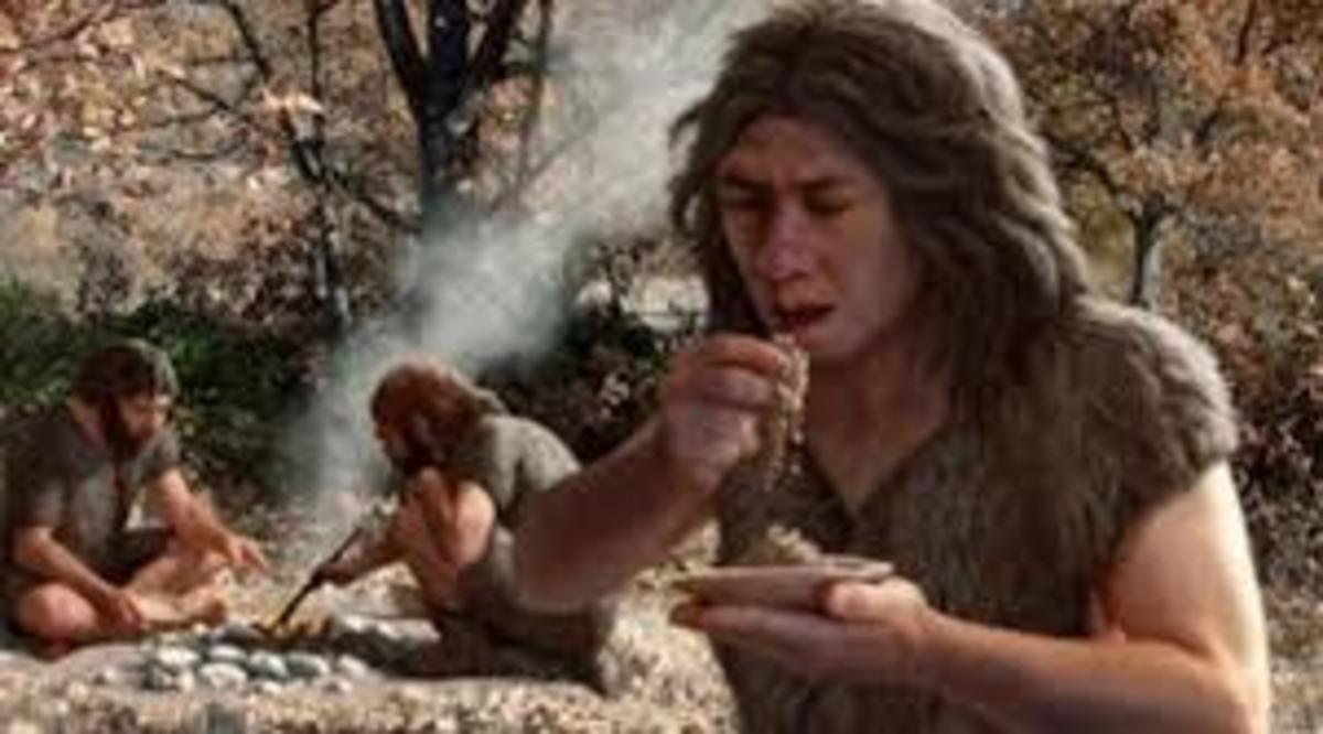 Τι έτρωγαν οι Νεάτερνταλ – Το μενού ανα χώρα!   Newsit.gr