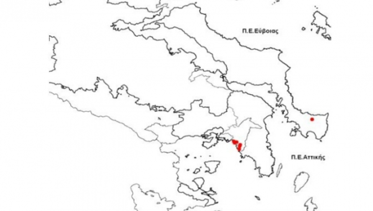 ΚΕΕΛΠΝΟ: όλα τα στοιχεία για τον ιό του Δυτικού Νείλου | Newsit.gr