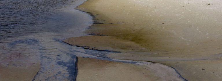 Η μαύρη παλίρροια στον Κόλπο του Μεξικού – Ξεπουλιέται η BP για ν' ανταπεξέλθει στον καθαρισμό   Newsit.gr