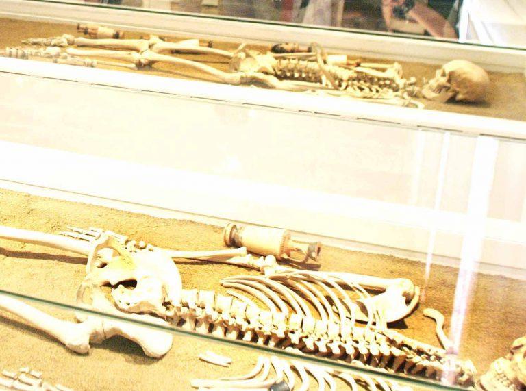 Χανιά: Βρήκε ανθρώπινα οστά από τη μάχη της Κρήτης!   Newsit.gr