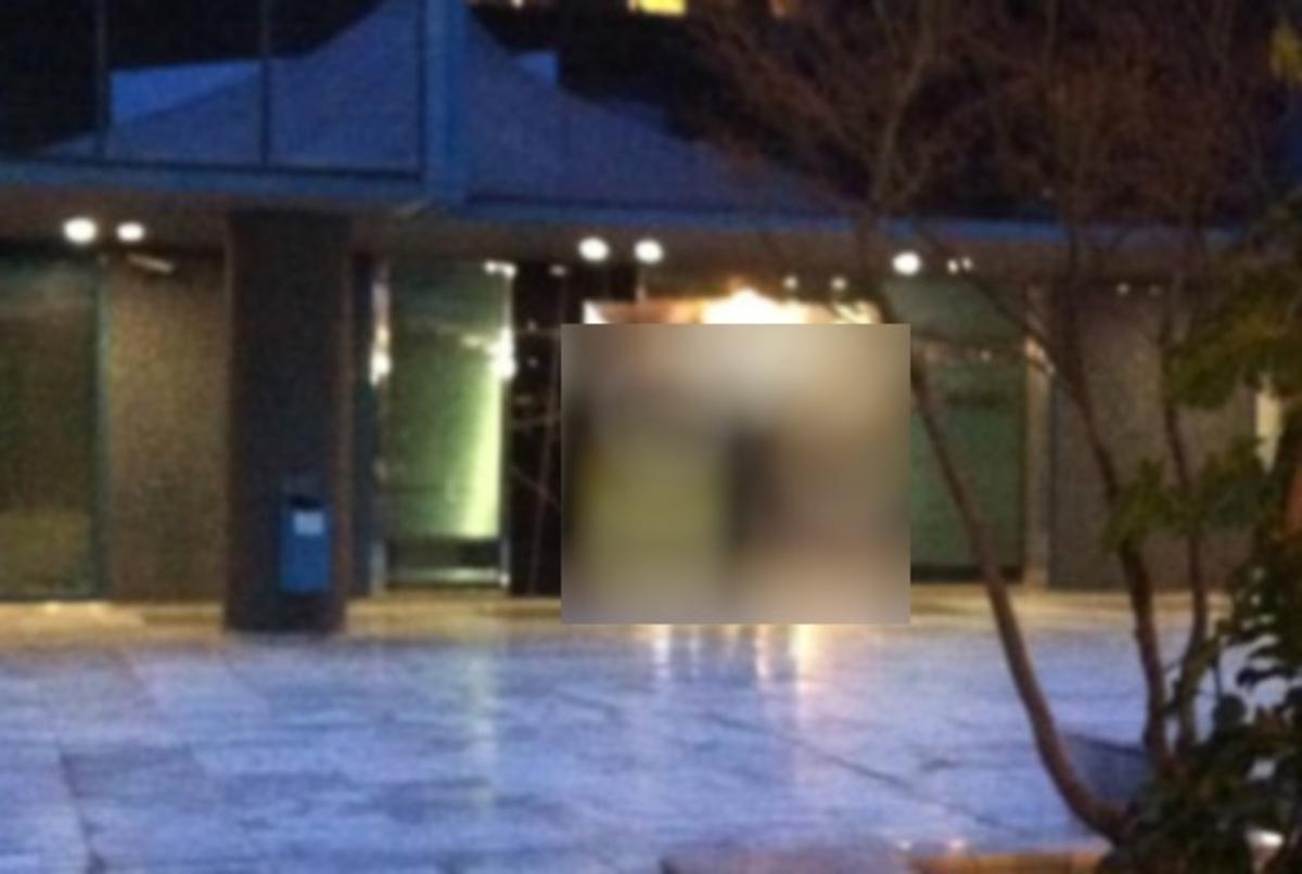 Ο διευθυντής του MEGA απαντά στη Χρυσή Αυγή με φώτο του Χρήστου Παππά, ενώ ουρεί στην είσοδο του καναλιού! | Newsit.gr