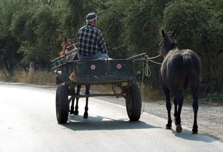 Πύλος: Βασάνισαν ηλικιωμένο μέχρι θανάτου για να τον ληστέψουν   Newsit.gr