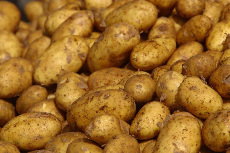 Πατάτες χωρίς μεσάζοντες και στην Αττική – Όλες οι λεπτομέρειες!   Newsit.gr